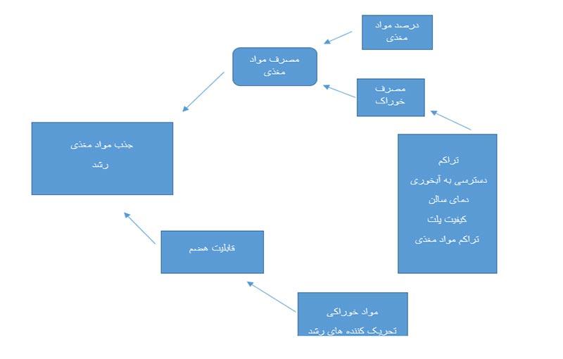 عوامل مؤثر بر جذب مواد مغذی و رشد بوقلمون