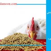 احتياجات مرغ گوشتی در قالب مواد مغذی در جیره