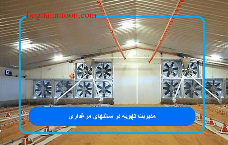 مدیریت تهویه در سالنهای مرغ گوشتی (مرغداری)