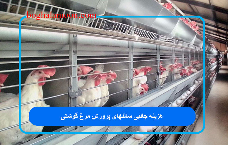 هزینه جانبی سالنهای پرورش مرغ گوشتی