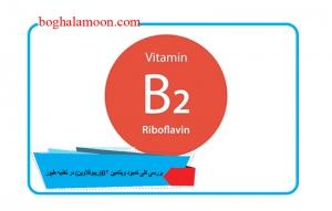 بررسی کلی کمبود ویتامین B2(ریبوفلاوین) در تغذیه طیور