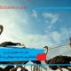 بیماری های متابولیکی شترمرغ ، یبوست شترمرغ ، پیچیدگی روده شترمرغ