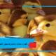 نگهداری استاندارد اردک(شرایط محیطی و نگهداری)