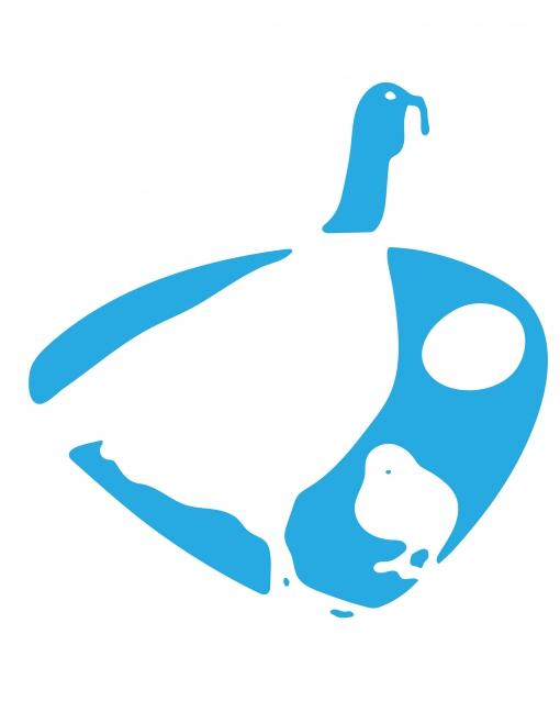 بیماری کوکسیدیوز کبوتر و انواع بیماریهای مشابه آن