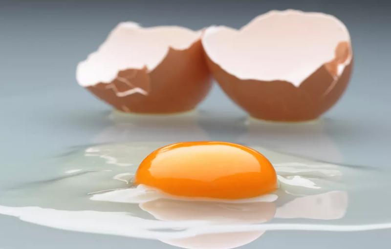 ساختمان تخم مرغ ارزش غذایی تخم مرغ