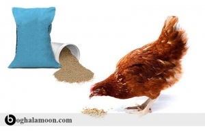 منابع مواد معدنی و ویتامین در تغذیه طیور