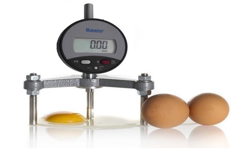 عوامل موثر بر کیفیت داخلی تخم مرغ