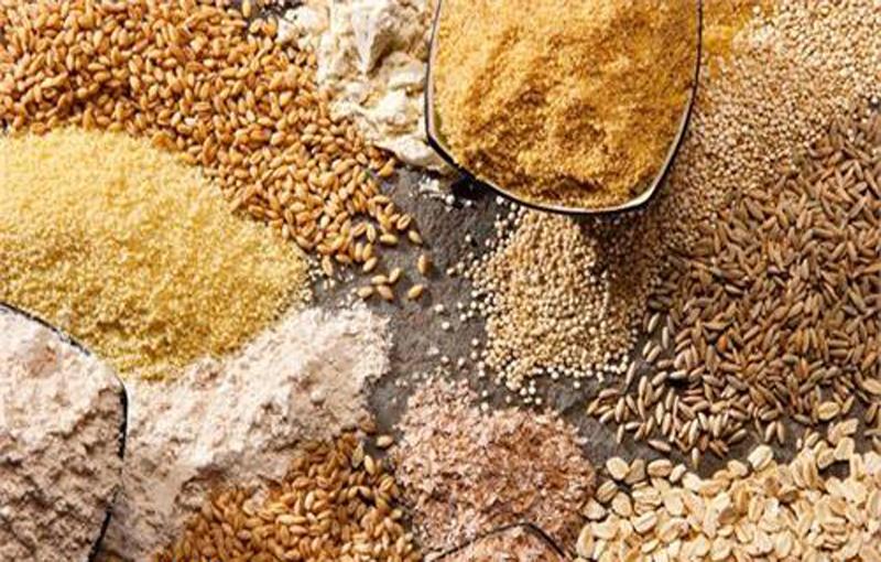 دانه های روغنی در تغذیه طیور منبع پروتئینی در تغذیه طیور