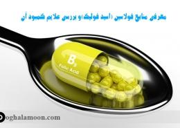 معرفی منابع اسید فولیک و بررسی علایم کمبود آن