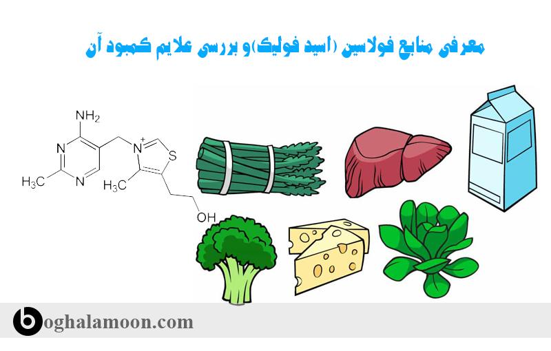 معرفی منابع فولاسین (اسید فولیک)و بررسی علایم کمبود آن11